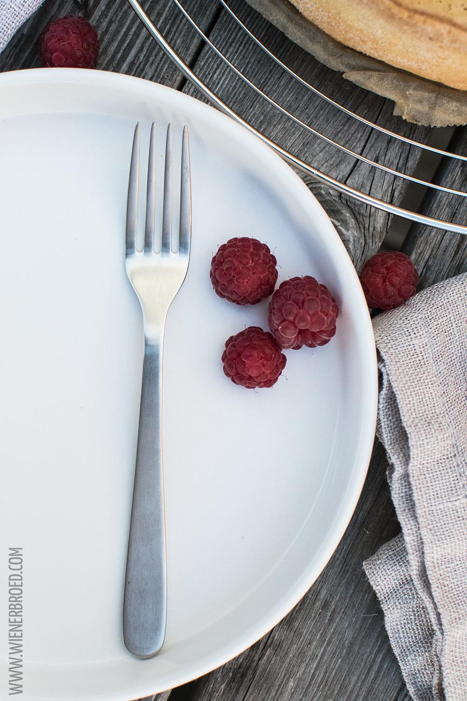 Skyr-Himbeer-Kuchen, fruchtiger Cheesecake mit isländischer Note / Skyr raspberry cake, fruity cheesecake with Icelandic touch [wienerbroed.com]