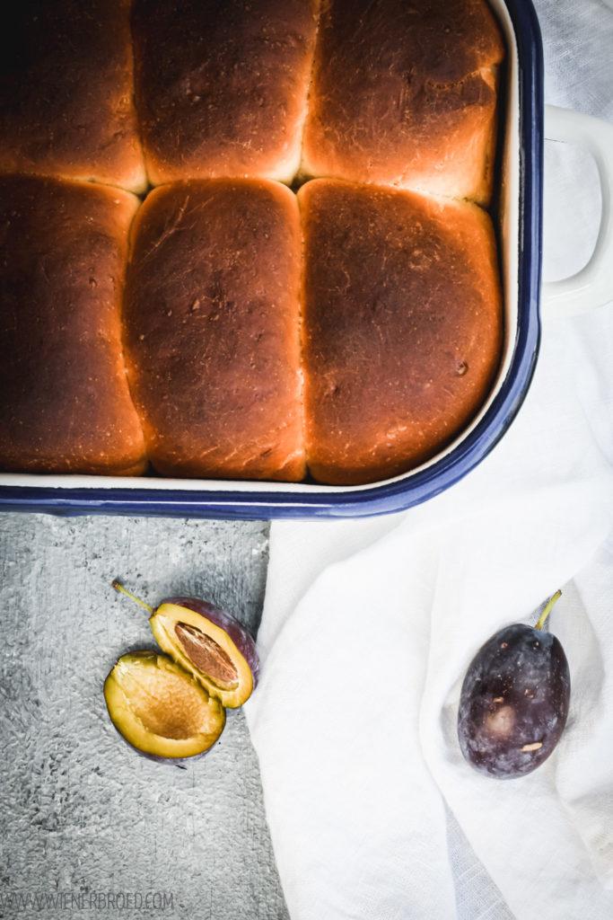 Zwetschgen-Buchteln, herrlich fluffige Rohrnudeln mit saftigen Zwetschgen und einer feinen Vanille-Note / Plum yeast dumplings, fluffy yeast dough filled with juicy damson plums and a fine vanilla taste [wienerbroed.com]